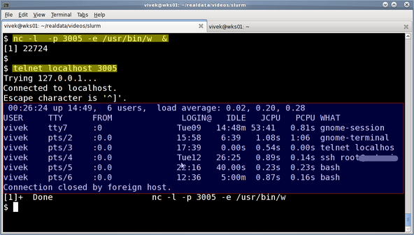 Fig.10: nc server and telnet client in action